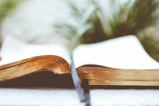 Salvation Bible Basics Course